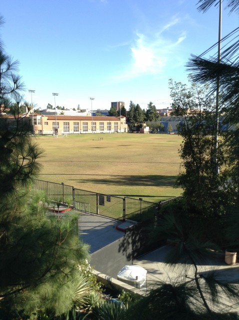 View of field from Charles E Young Dr