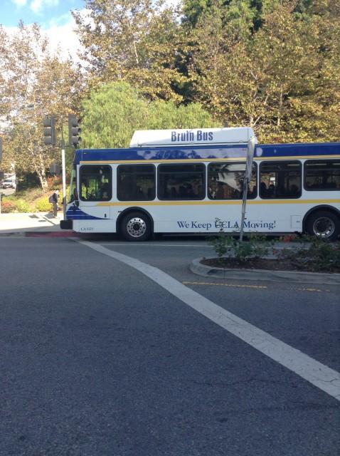Bruin bus