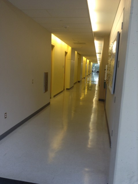 Down this hallway, to the right of the elevators