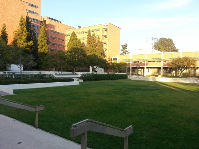 Beautiful lawn in the middle of Westwood!