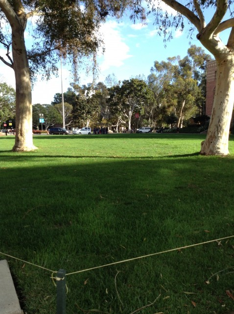 Another View from entrance between Royce Hall and Haines Hall