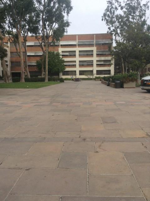 Court of sciences