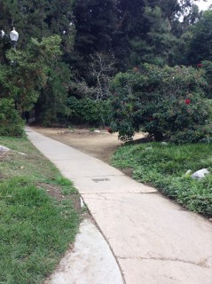 Pathway from the street