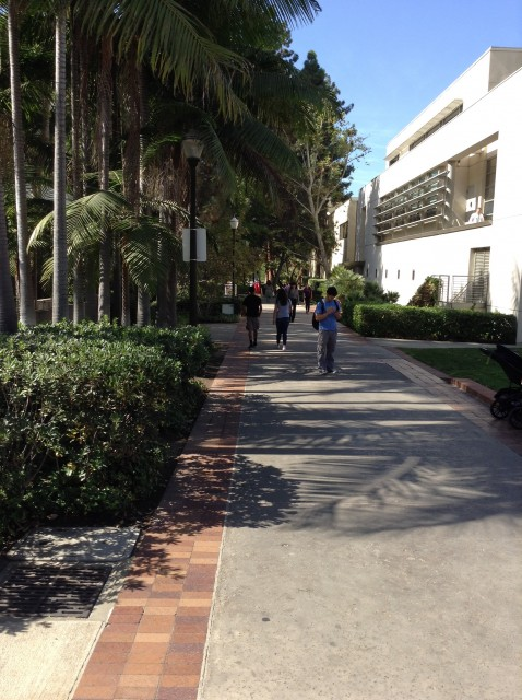 Side avenue to reach Alumni Center